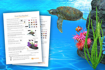 Coral Reef Augmented Reality Class Project Guide